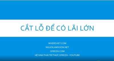CẮT LỖ ĐỂ LÃI LỚN TRÊN THỊ TRƯỜNG CHỨNG KHOÁN - nguoilamvuon.net - whereviet.com - TRỞ LẠI TỰ NHIÊN